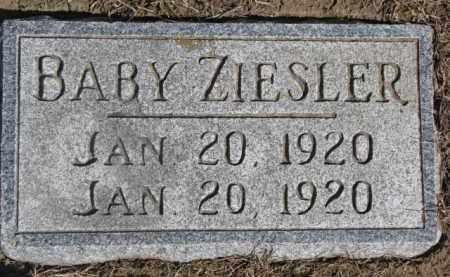 ZIESLER, INFANT - Dixon County, Nebraska | INFANT ZIESLER - Nebraska Gravestone Photos