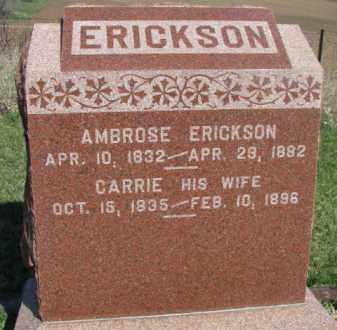 ERICKSON, AMBROSE - Dodge County, Nebraska | AMBROSE ERICKSON - Nebraska Gravestone Photos