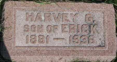 FROST, HARVEY G. - Dodge County, Nebraska | HARVEY G. FROST - Nebraska Gravestone Photos