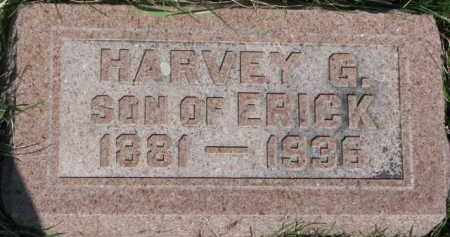 FROST, HARVEY G. - Dodge County, Nebraska | HARVEY G. FROST - Nebraska Gravestone Photos