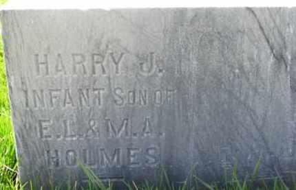 HOLMES, HARRY JR. - Dodge County, Nebraska | HARRY JR. HOLMES - Nebraska Gravestone Photos