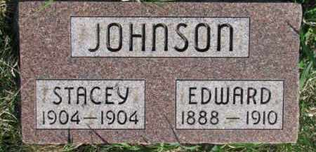 JOHNSON, STACEY - Dodge County, Nebraska | STACEY JOHNSON - Nebraska Gravestone Photos