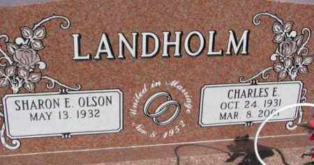LANDHOLM, CHARLES E. - Dodge County, Nebraska | CHARLES E. LANDHOLM - Nebraska Gravestone Photos