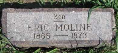 MOLINE, ERIC - Dodge County, Nebraska | ERIC MOLINE - Nebraska Gravestone Photos