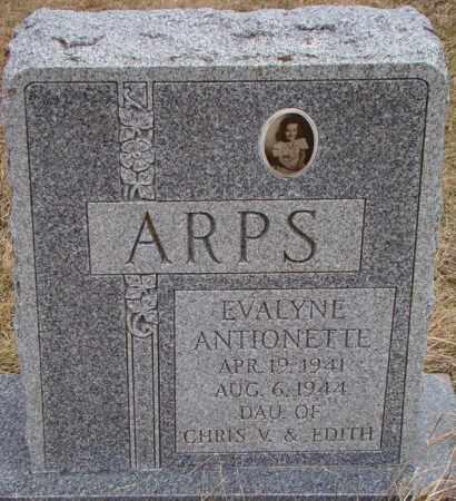 ARPS, EVALYNE ANTIONETTE - Dodge County, Nebraska | EVALYNE ANTIONETTE ARPS - Nebraska Gravestone Photos
