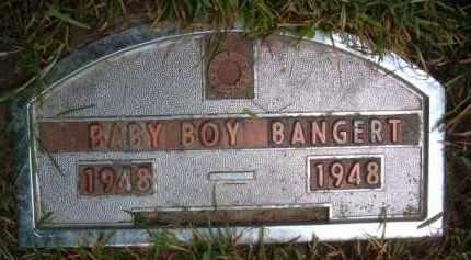 BANGERT, (BABY BOY) - Dodge County, Nebraska | (BABY BOY) BANGERT - Nebraska Gravestone Photos