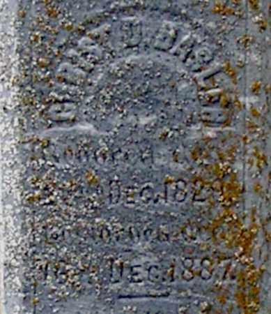 BASLER, CHRIST - Dodge County, Nebraska | CHRIST BASLER - Nebraska Gravestone Photos
