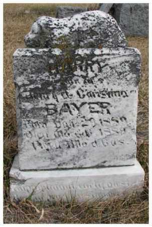BAYER, HARRY - Dodge County, Nebraska | HARRY BAYER - Nebraska Gravestone Photos