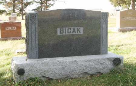 BICAK, (FAMILY MONUMENT) - Dodge County, Nebraska | (FAMILY MONUMENT) BICAK - Nebraska Gravestone Photos