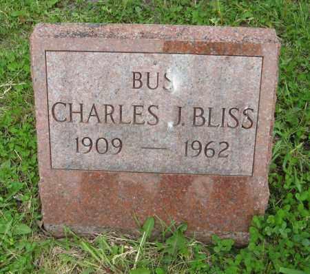 BLISS, CHARLES J. - Dodge County, Nebraska | CHARLES J. BLISS - Nebraska Gravestone Photos