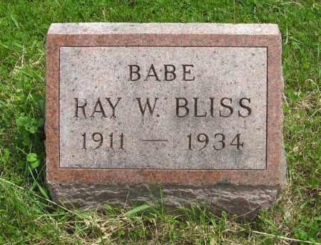 BLISS, RAY W. - Dodge County, Nebraska   RAY W. BLISS - Nebraska Gravestone Photos