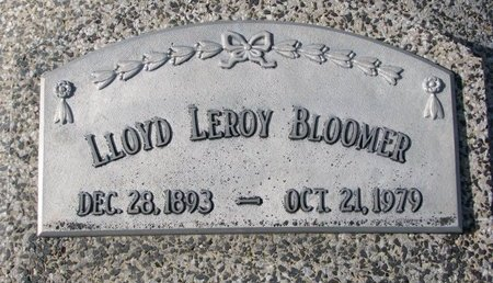 BLOOMER, LLOYD LEROY - Dodge County, Nebraska | LLOYD LEROY BLOOMER - Nebraska Gravestone Photos