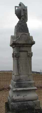 BODEWIG, JOHANN - Dodge County, Nebraska | JOHANN BODEWIG - Nebraska Gravestone Photos