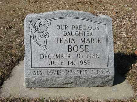 BOSE, TESIA MARIE - Dodge County, Nebraska | TESIA MARIE BOSE - Nebraska Gravestone Photos