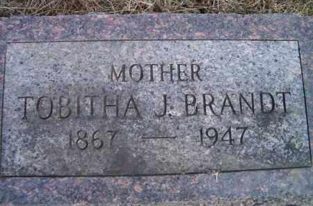 BRANDT, TOBITHA J - Dodge County, Nebraska | TOBITHA J BRANDT - Nebraska Gravestone Photos