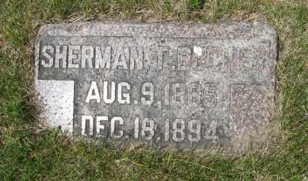 BUCHER, SHERMAN T. - Dodge County, Nebraska | SHERMAN T. BUCHER - Nebraska Gravestone Photos