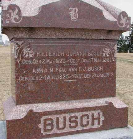 BUSCH, FRIEDERICH JOHANN - Dodge County, Nebraska | FRIEDERICH JOHANN BUSCH - Nebraska Gravestone Photos