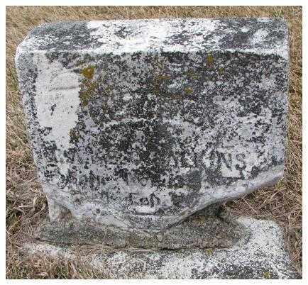 CALKINS, DORA C. - Dodge County, Nebraska | DORA C. CALKINS - Nebraska Gravestone Photos