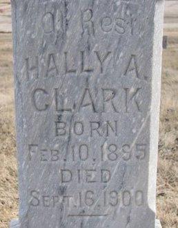 CLARK, HALLY A. (CLOSE UP) - Dodge County, Nebraska | HALLY A. (CLOSE UP) CLARK - Nebraska Gravestone Photos