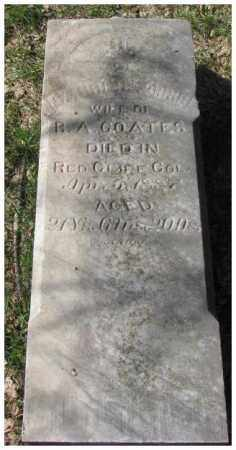 COATES, CARRIE L. - Dodge County, Nebraska | CARRIE L. COATES - Nebraska Gravestone Photos