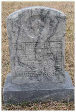 CONGER CRAIG, LYDIA - Dodge County, Nebraska | LYDIA CONGER CRAIG - Nebraska Gravestone Photos