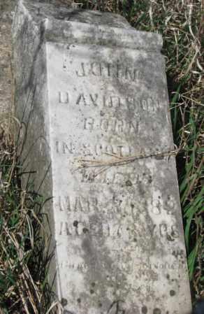 DAVIDSON, JOHN - Dodge County, Nebraska | JOHN DAVIDSON - Nebraska Gravestone Photos