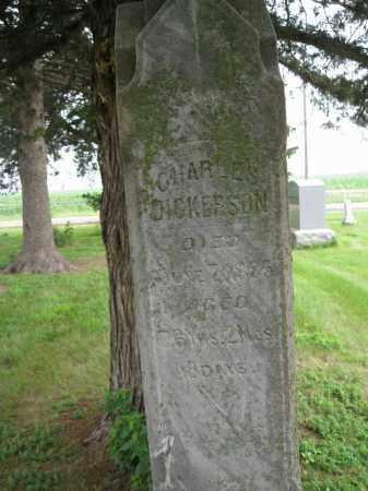 DICKERSON, CHARLES - Dodge County, Nebraska | CHARLES DICKERSON - Nebraska Gravestone Photos