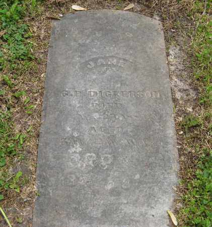 DICKERSON, JANE - Dodge County, Nebraska   JANE DICKERSON - Nebraska Gravestone Photos