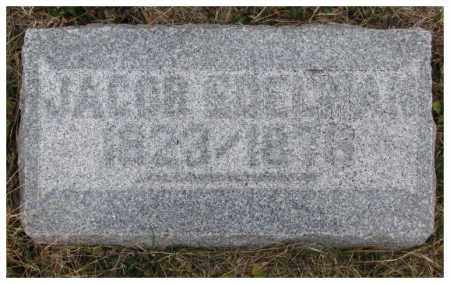 EDELMAN(N), JACOB - Dodge County, Nebraska | JACOB EDELMAN(N) - Nebraska Gravestone Photos