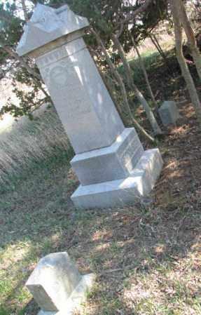 FERGUSON, ANNA - Dodge County, Nebraska | ANNA FERGUSON - Nebraska Gravestone Photos