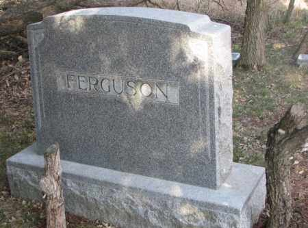FERGUSON, PLOT - Dodge County, Nebraska | PLOT FERGUSON - Nebraska Gravestone Photos