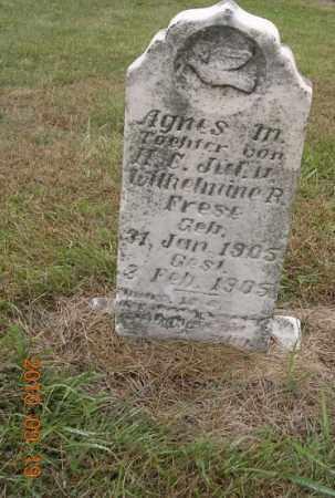 FRESE, AGNES - Dodge County, Nebraska   AGNES FRESE - Nebraska Gravestone Photos