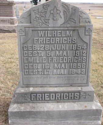 FRIEDRICHS, WILHELM - Dodge County, Nebraska | WILHELM FRIEDRICHS - Nebraska Gravestone Photos