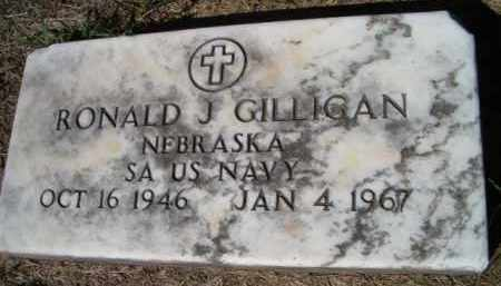 GILLIGAN, RONALD J (MILITARY MARKER) - Dodge County, Nebraska | RONALD J (MILITARY MARKER) GILLIGAN - Nebraska Gravestone Photos