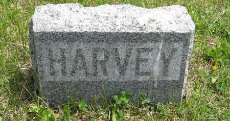 GRAHAM, HARVEY (SMALL STONE) - Dodge County, Nebraska | HARVEY (SMALL STONE) GRAHAM - Nebraska Gravestone Photos