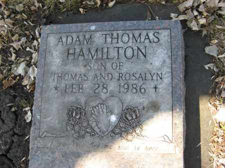 HAMILTON, ADAM THOMAS - Dodge County, Nebraska   ADAM THOMAS HAMILTON - Nebraska Gravestone Photos