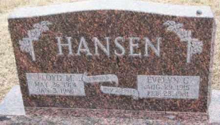 HANSEN, FLOYD M. - Dodge County, Nebraska | FLOYD M. HANSEN - Nebraska Gravestone Photos