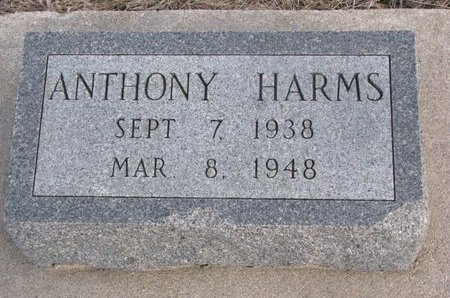 HARMS, ANTHONY - Dodge County, Nebraska | ANTHONY HARMS - Nebraska Gravestone Photos