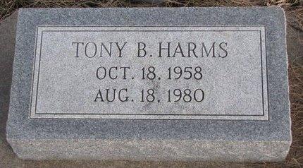 HARMS, TONY B. - Dodge County, Nebraska | TONY B. HARMS - Nebraska Gravestone Photos