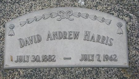HARRIS, DAVID ANDREW - Dodge County, Nebraska | DAVID ANDREW HARRIS - Nebraska Gravestone Photos