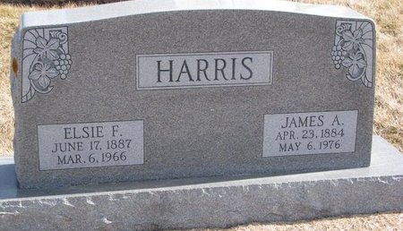 HARRIS, JAMES A. - Dodge County, Nebraska | JAMES A. HARRIS - Nebraska Gravestone Photos