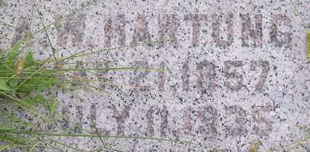 HARTUNG, ALBERT - Dodge County, Nebraska | ALBERT HARTUNG - Nebraska Gravestone Photos