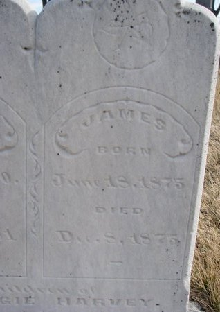 HARVIE, JAMES (CLOSE UP) - Dodge County, Nebraska | JAMES (CLOSE UP) HARVIE - Nebraska Gravestone Photos