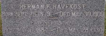 HAVEKOST, HERMAN F - Dodge County, Nebraska | HERMAN F HAVEKOST - Nebraska Gravestone Photos
