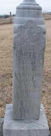 HOFFMANN, CHARLIE F. - Dodge County, Nebraska | CHARLIE F. HOFFMANN - Nebraska Gravestone Photos