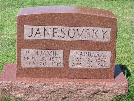 JANESOVSKY, BENJAMIN - Dodge County, Nebraska | BENJAMIN JANESOVSKY - Nebraska Gravestone Photos