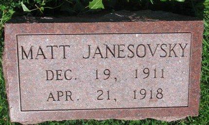 JANESOVSKY, MATT - Dodge County, Nebraska | MATT JANESOVSKY - Nebraska Gravestone Photos