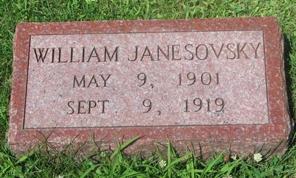 JANESOVSKY, WILLIAM - Dodge County, Nebraska | WILLIAM JANESOVSKY - Nebraska Gravestone Photos