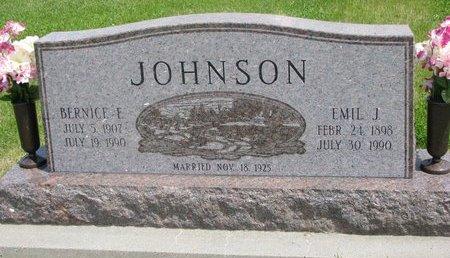 JOHNSON, EMIL J. - Dodge County, Nebraska | EMIL J. JOHNSON - Nebraska Gravestone Photos