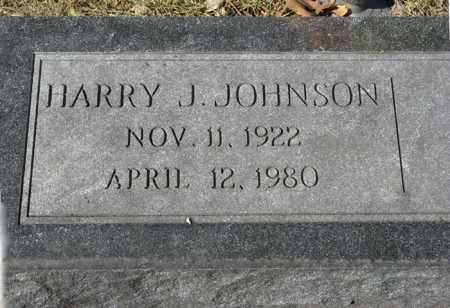 JOHNSON, HARRY J. - Dodge County, Nebraska | HARRY J. JOHNSON - Nebraska Gravestone Photos